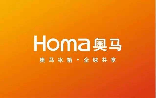 奥马电器:赵国栋砸30亿互金业务爆雷拖垮上市公司